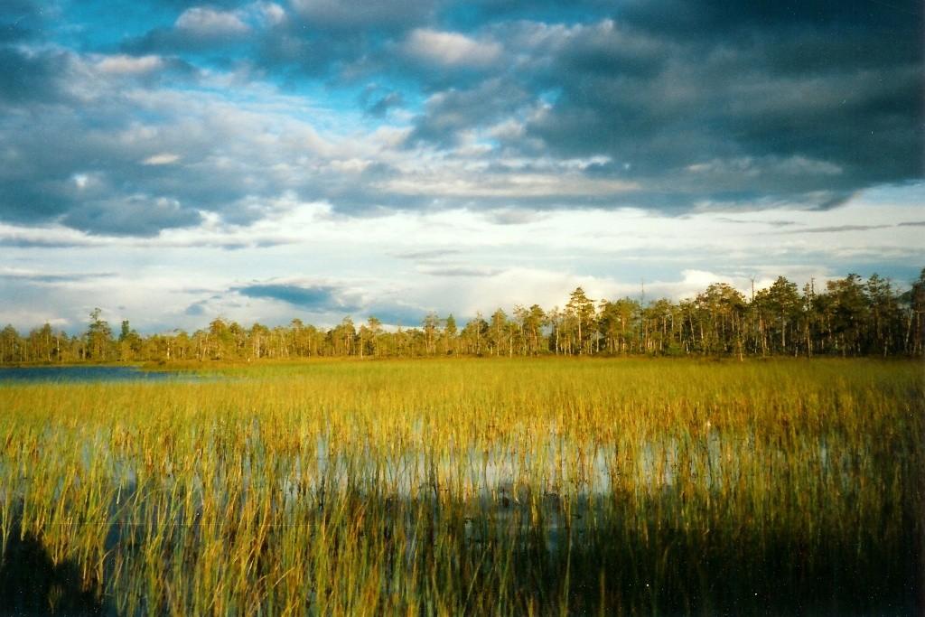 Die Faszination dieser weitläufigen Großlandschaft steht außer Frage...