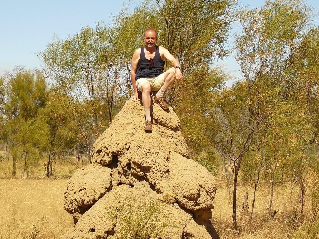 """Ich setze mich mal auf solch einen Termitenhügel um die Größe des """"Bauwerkes"""" zu verdeutlichen. Es gibt jedoch noch viel größere Exemplare."""