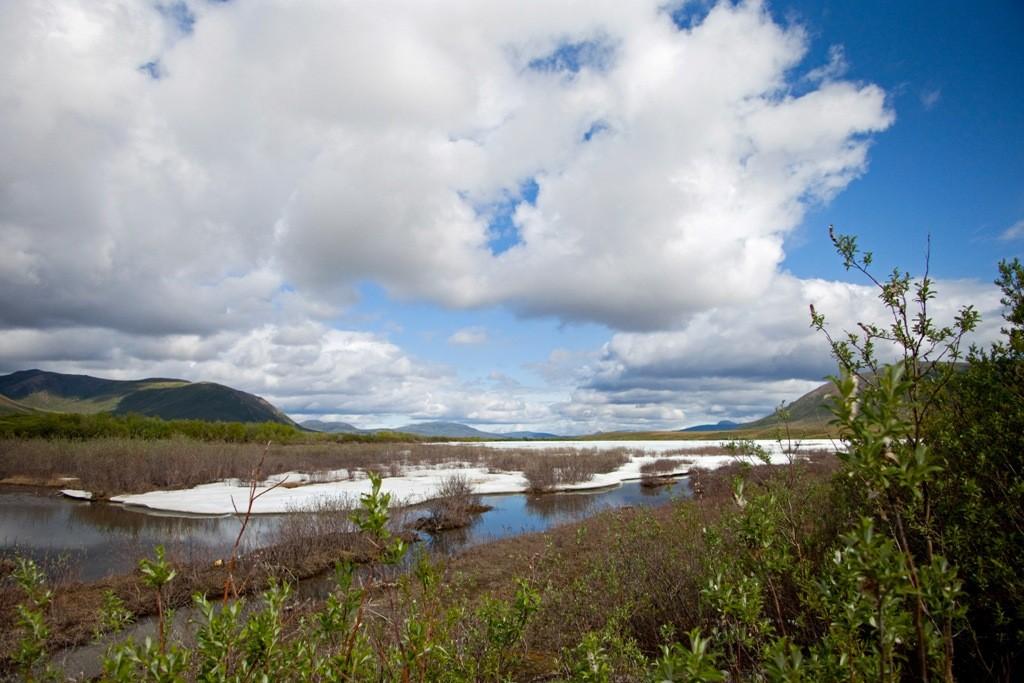 Wieder müssen wir halten, da der z.T. noch vereiste Peel River hervorragende Motive für die Linse und das Fotoalbum bietet