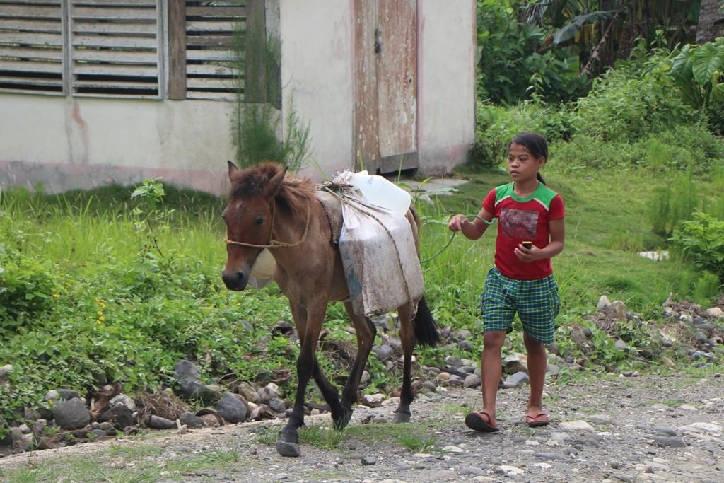 Eine junge Filipina plus junges Pferdchen kommt uns von unten entgegen - was hält sie in der Hand, natürlich ein Mobil Phone!