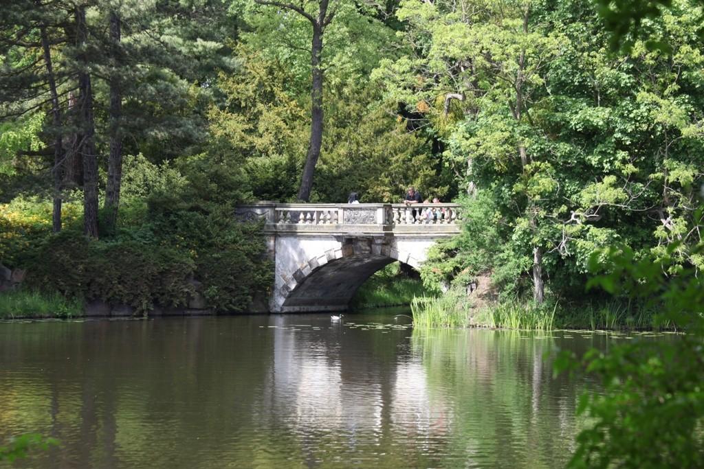 Die Neue Brücke am Verbindungskanal Kleines Wallloch - Wörlitzer See ist wirklich die neuste Brücke im Park.