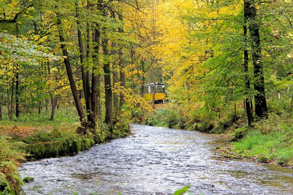 Auf der (in der) Kirnitzsch, die immerhin ca.45 Km lang ist, wurde auf den letzten 20 Km bis zur Elbmündung bis ins 20. Jh. hinein, Holzflößerei betrieben!