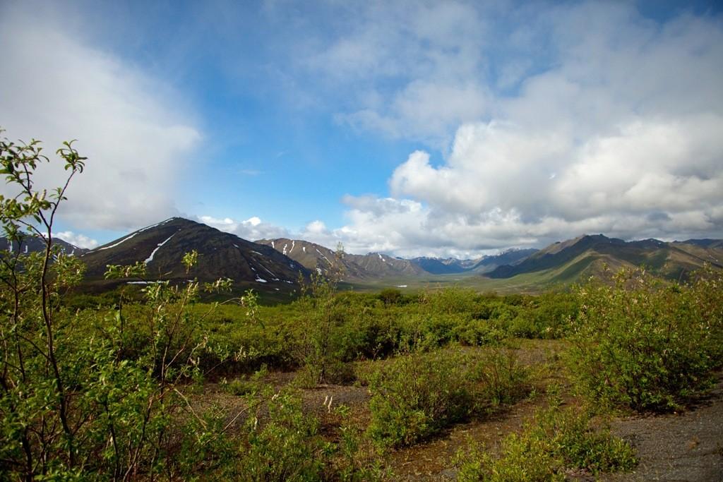 Blick in ein Teilstück des Taiga Valleys