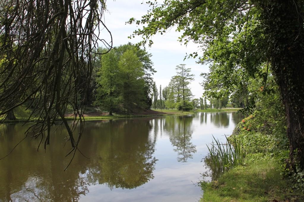 Wörlitzer Wasserlandschaft