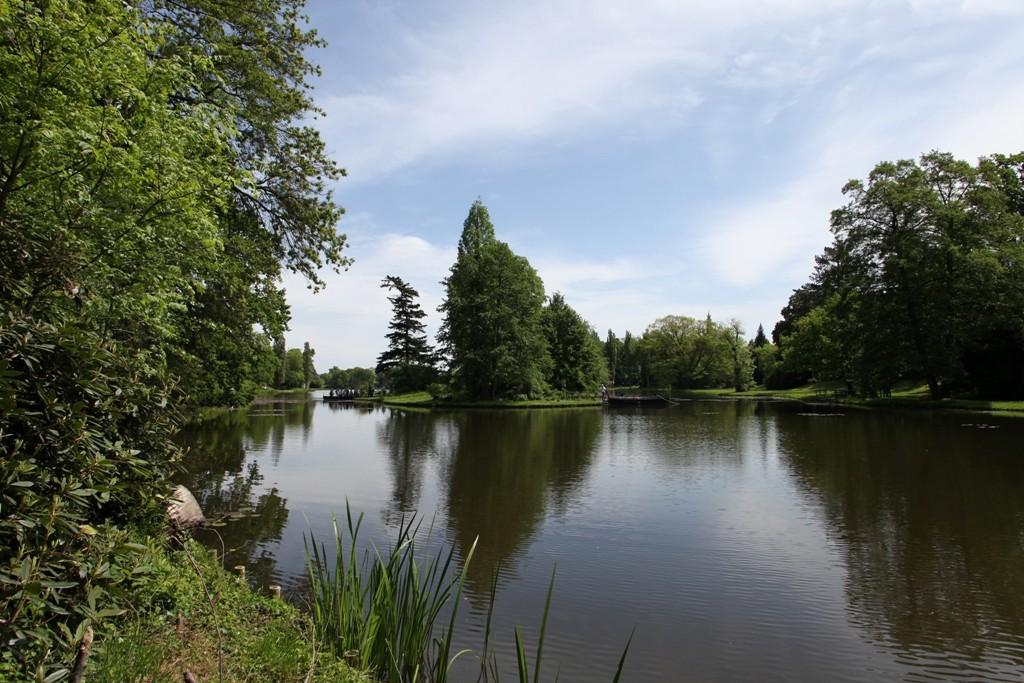Beeindruckende und zugleich beruhigende Wasserlandschaft um den Wörlitzer See