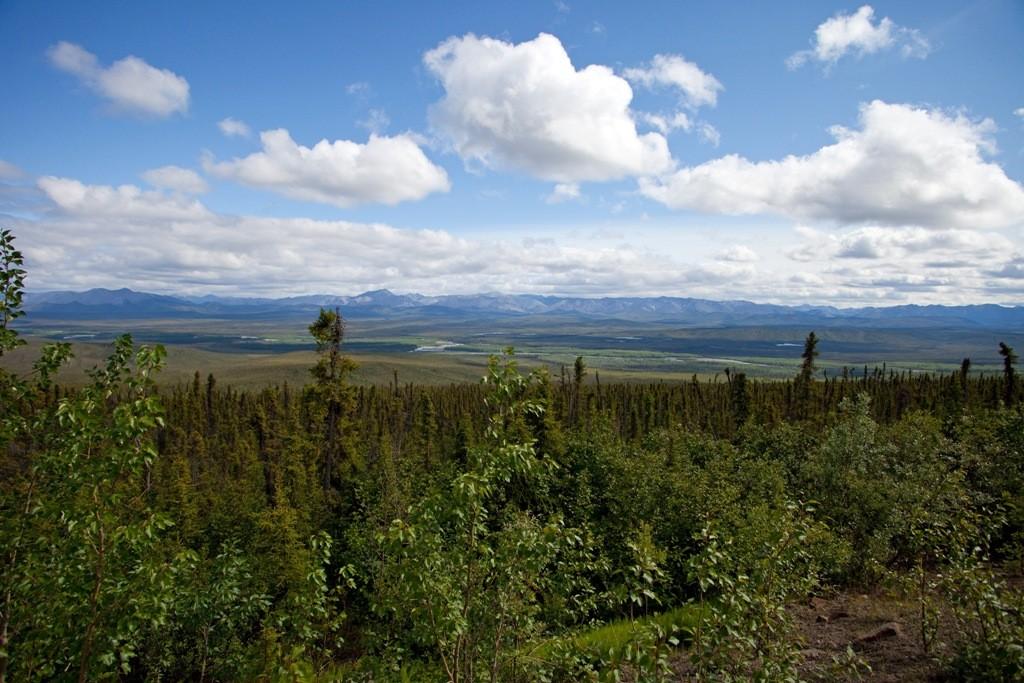 Blick vom Eagle Plateau ins Ogilvie Tal
