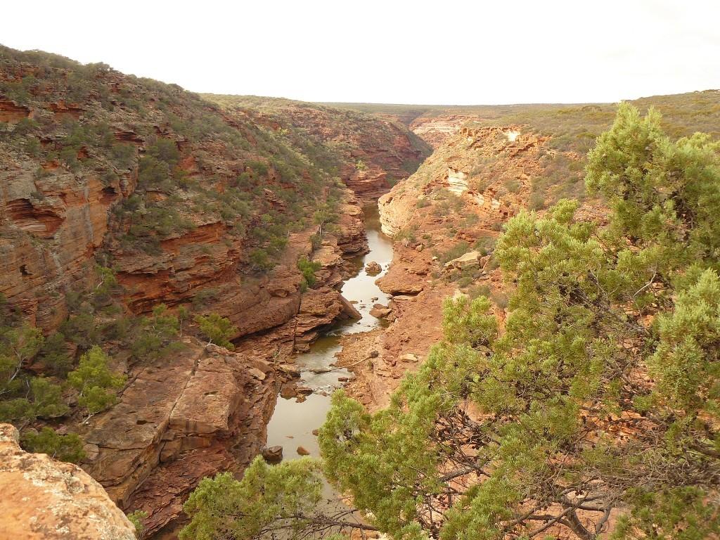 Teilansicht des Murchison Valleys im Nature Reserve des Kalbarri NP