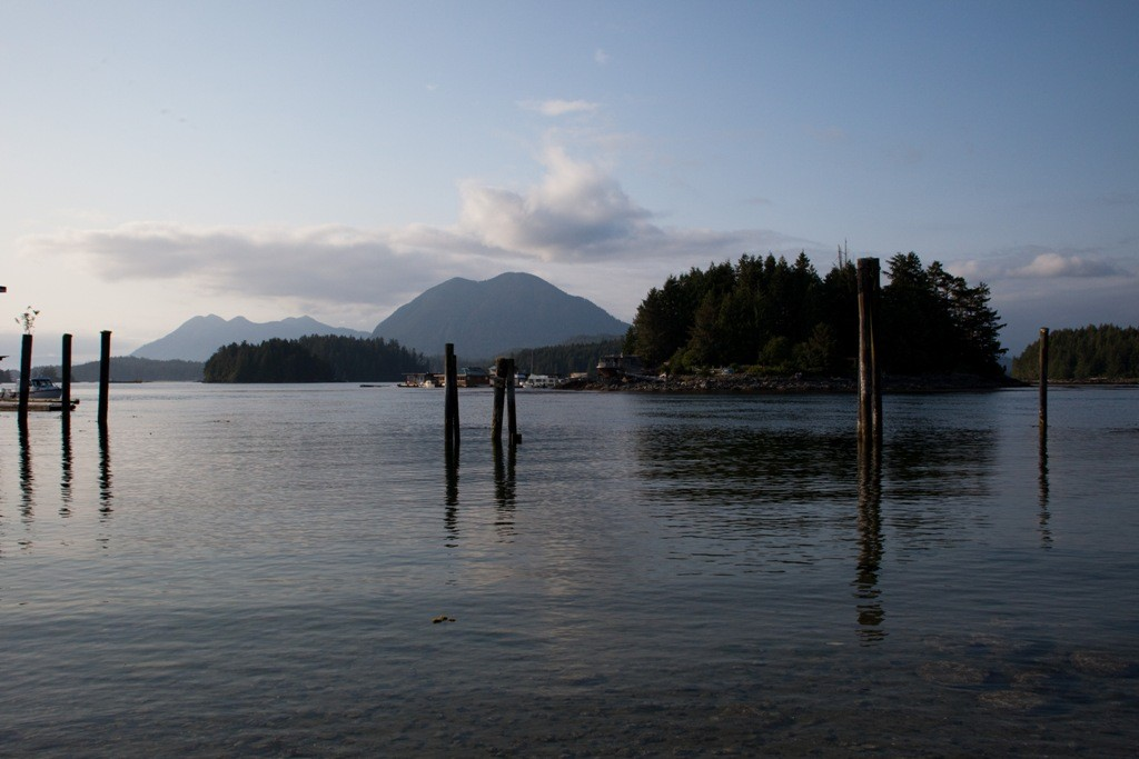 Grice Bay, Tofino Inlet bei idealem Fotowetter