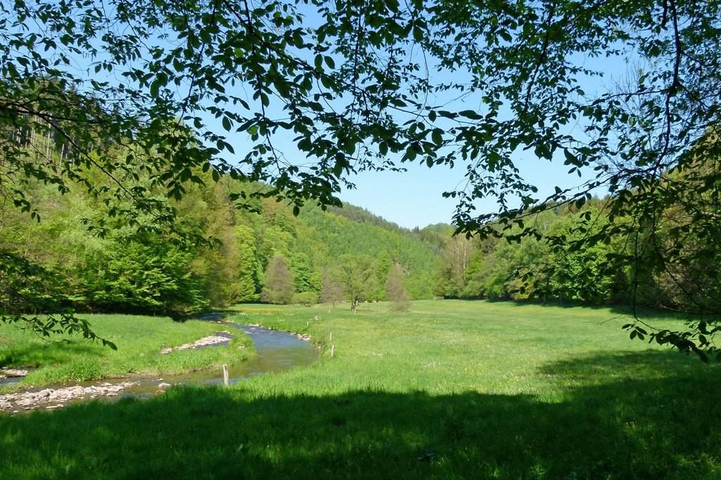 Wunderschöne Auen entlang der Polenz und dazu die wohltuende Ruhe