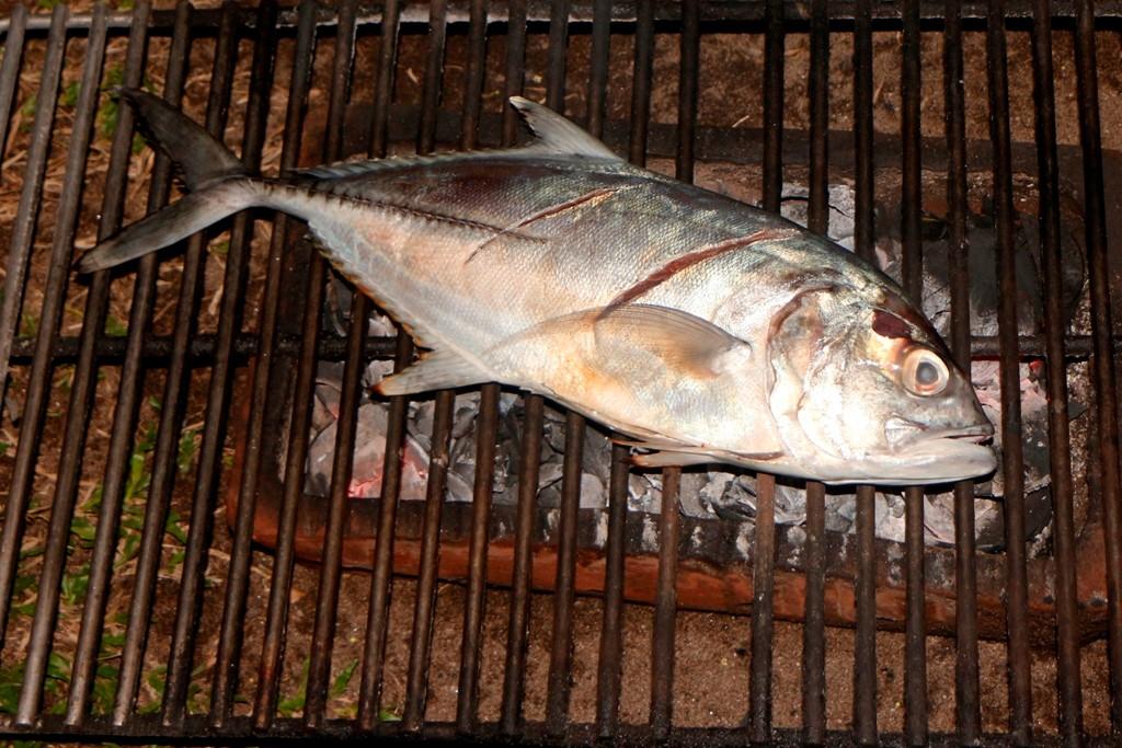 Und das ist unsere Hauptattraktion für den Gaumen, ein Mamsa oder Jackfish wird auf Holzkohle fachgerecht gegrillt!