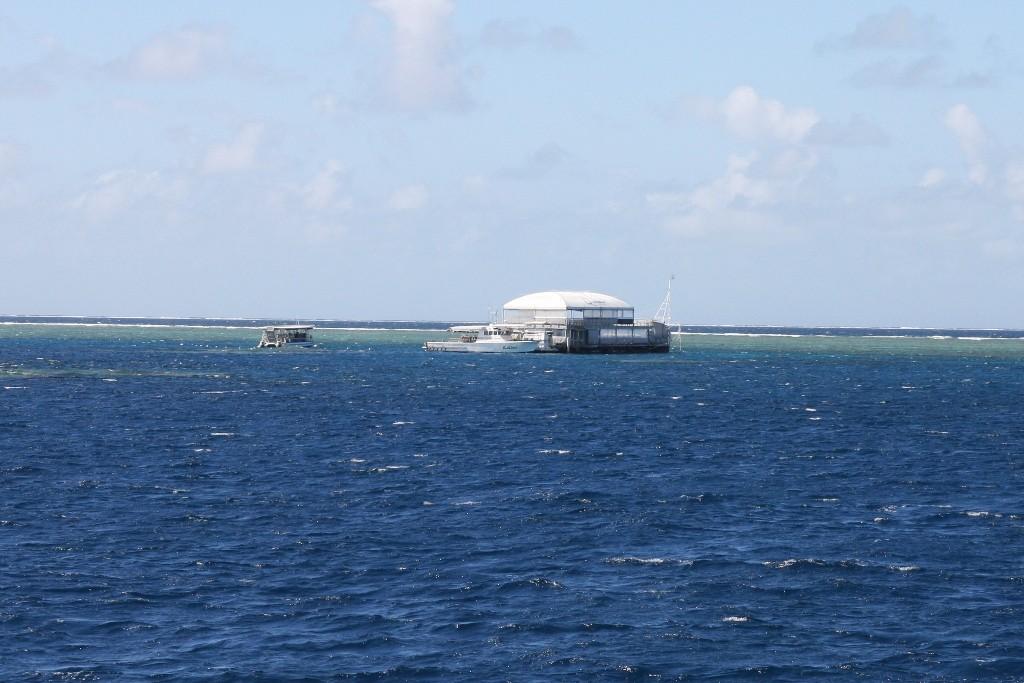 Die Quicksilver- Plattform im Great Barrier Reef, Ausgangspunkt für das Diving und Snorkeling.
