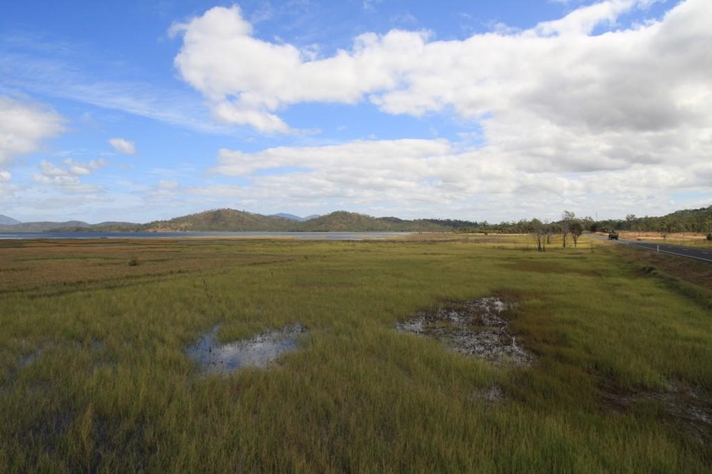 Sumpfiges Umland am Lake Mitchell