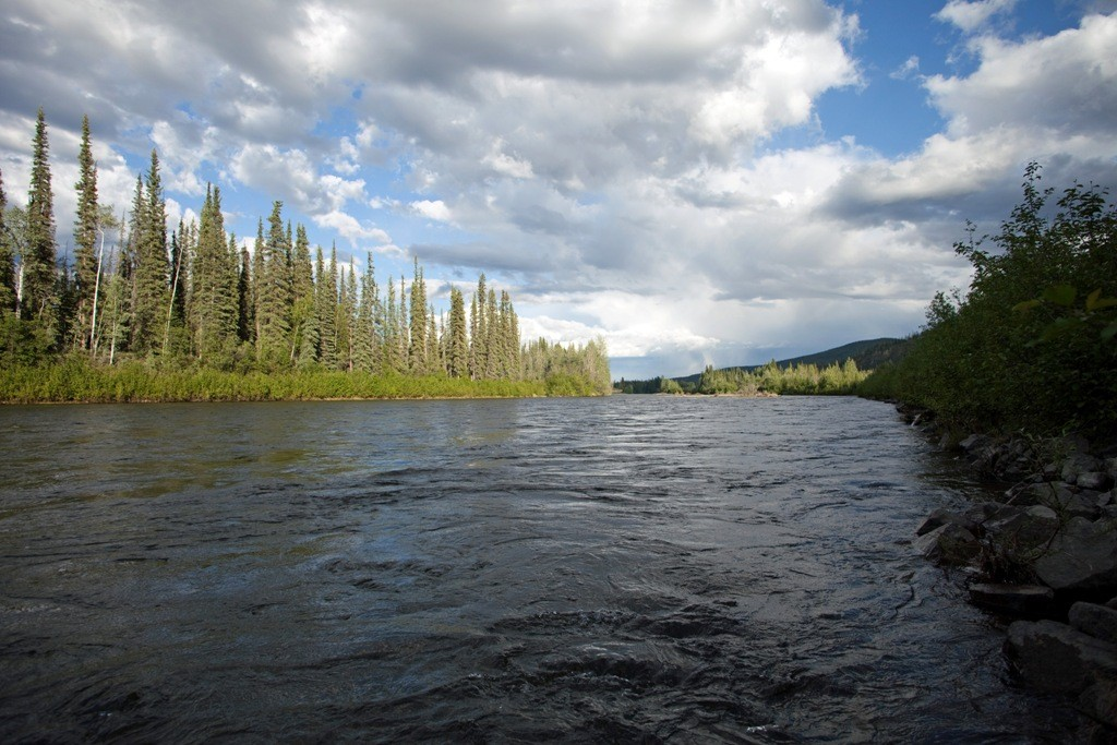 Den Namen verdankt der Klondike River seinem Fischreichtum, der von den Indianern -Fluss voller Fische- genannt wurde woraus etwas abgewandelt dann sein heutiger Name entstand