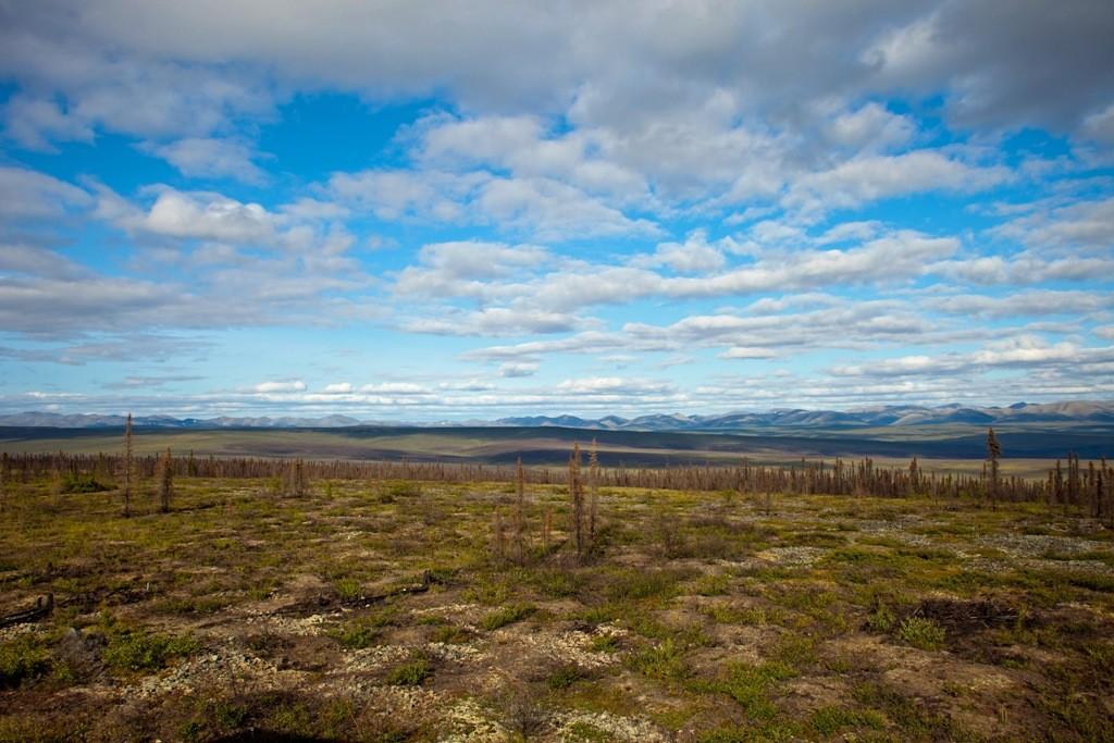 Auf den Eagle Plateau mit Blickrichtung NO