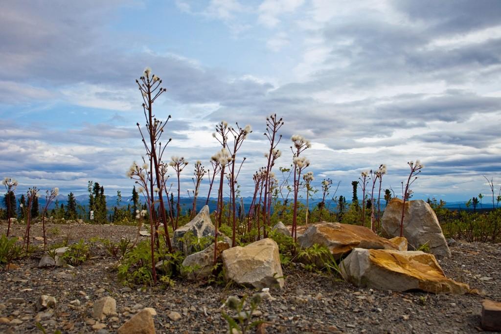 Impressionen auf den Eagle Plateau