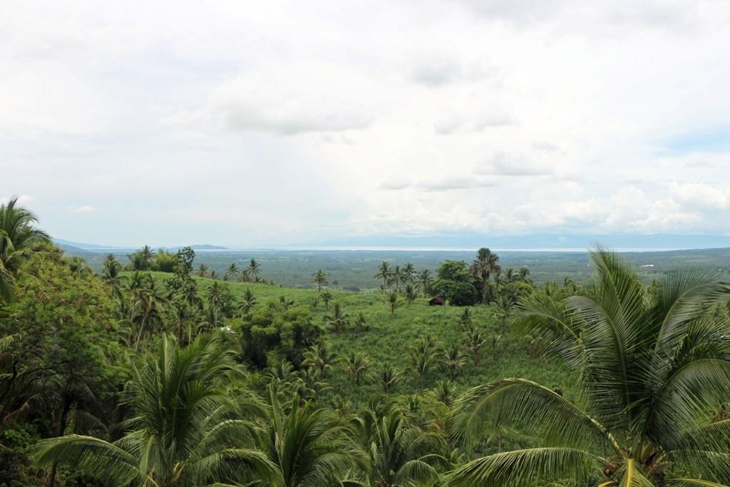 Im Hintergrund die Tanon Strait und Cebu Island!