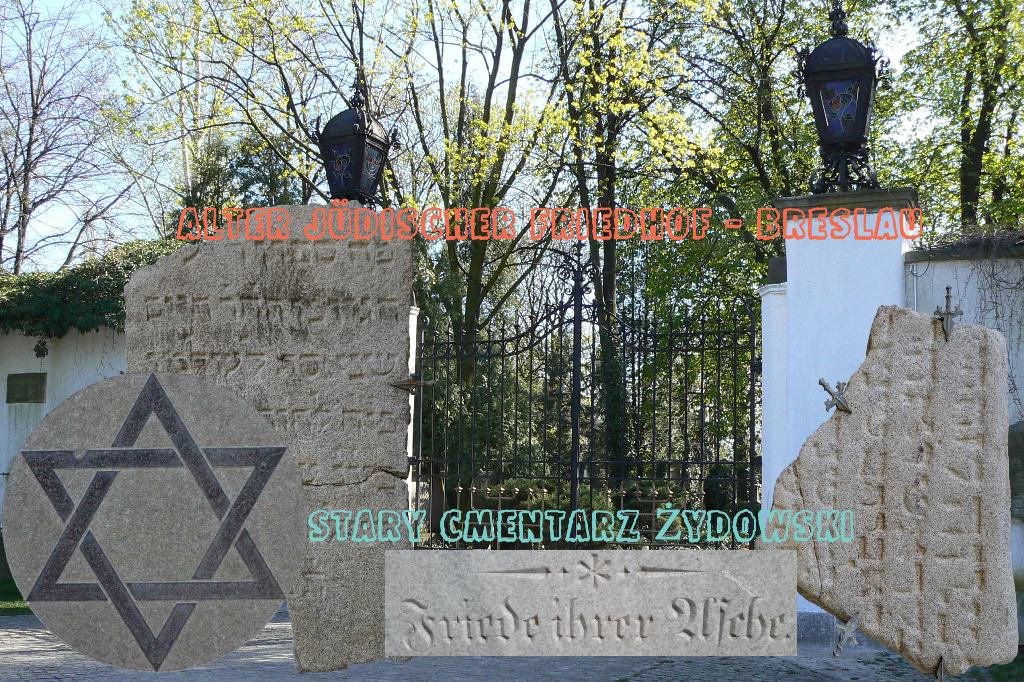 Fotocollage als Aufmacher für den Alten Judenfriedhof