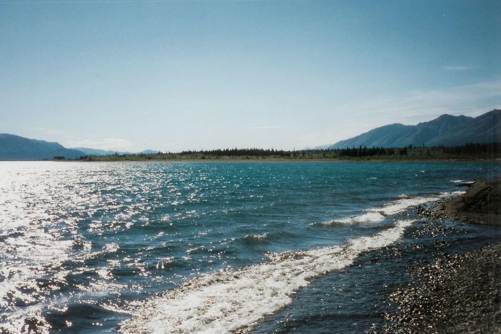Ufer des Kluane Lakes
