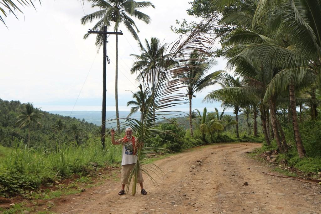 Einige Palmenwedel lagen auf der Straße, sie mussten weg - hier dass Beweisfoto!