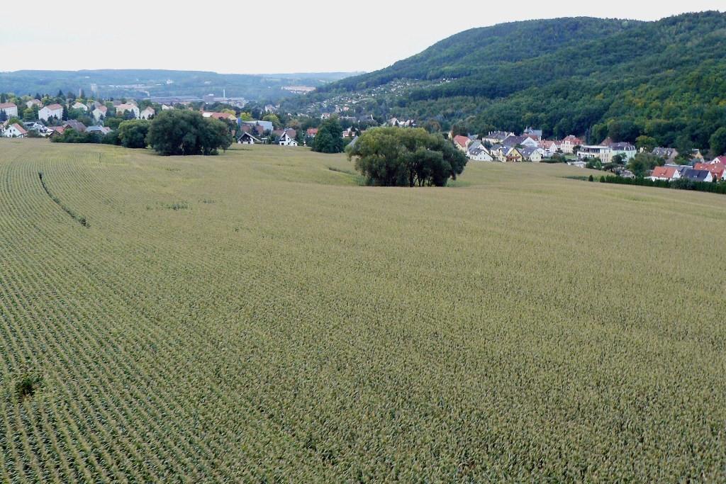 ...kurz vor der Landung nahe Obernaundorf