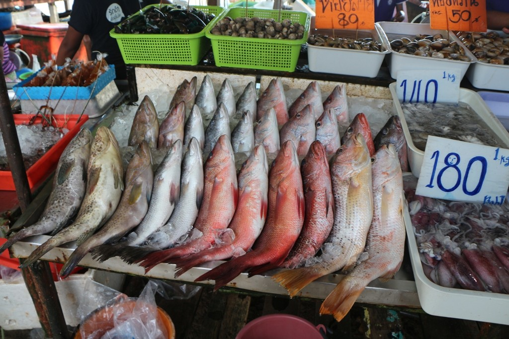 Leckerer Sefisch, frisch gefangen, riecht überhaupt nicht und schmeckt bestimmt hervorragend, ich habe gleich ein Pfützchen auf der Zunge!