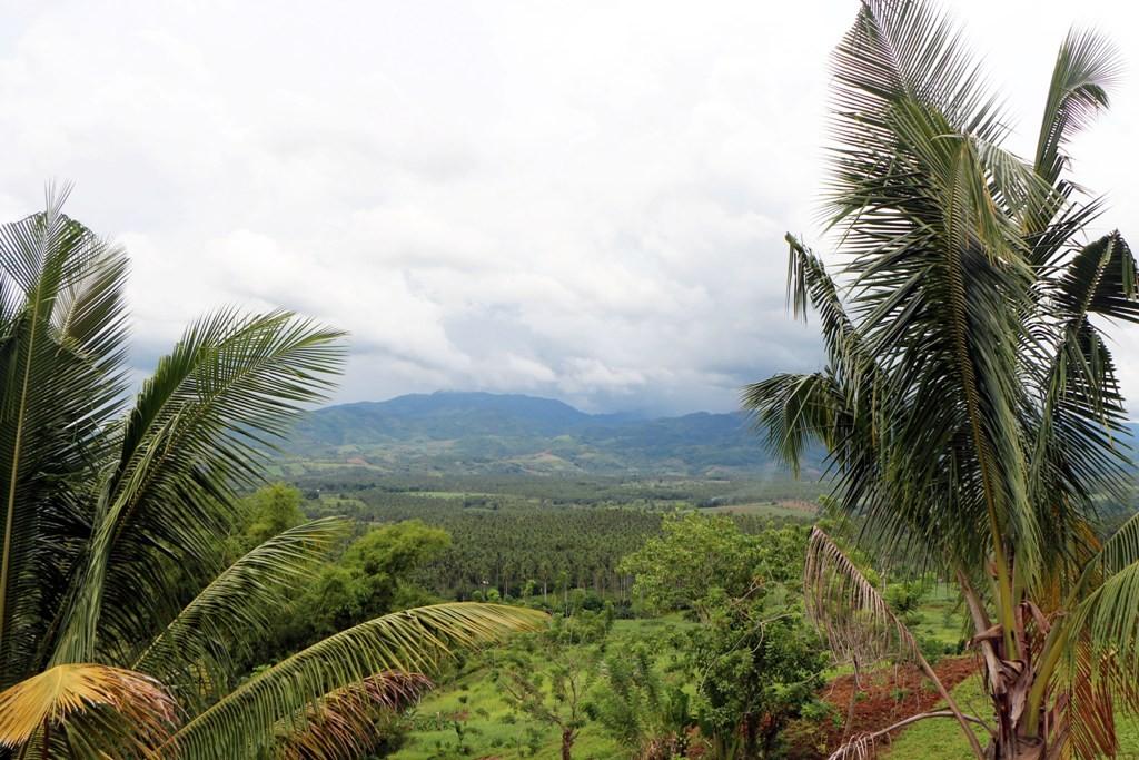 Ständig fuhren wir berg an, in die nördlichen Ausläufer der Cuernos de Negros, die hier nicht mehr so hoch waren!