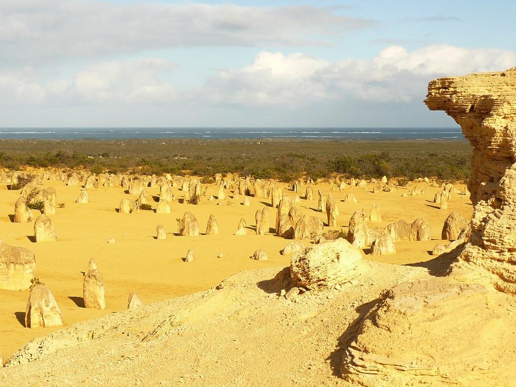 Die Pinnacles sind Kalkstein -Formationen die aus Muscheln in früheren Epochen durch Auswaschungen entstanden