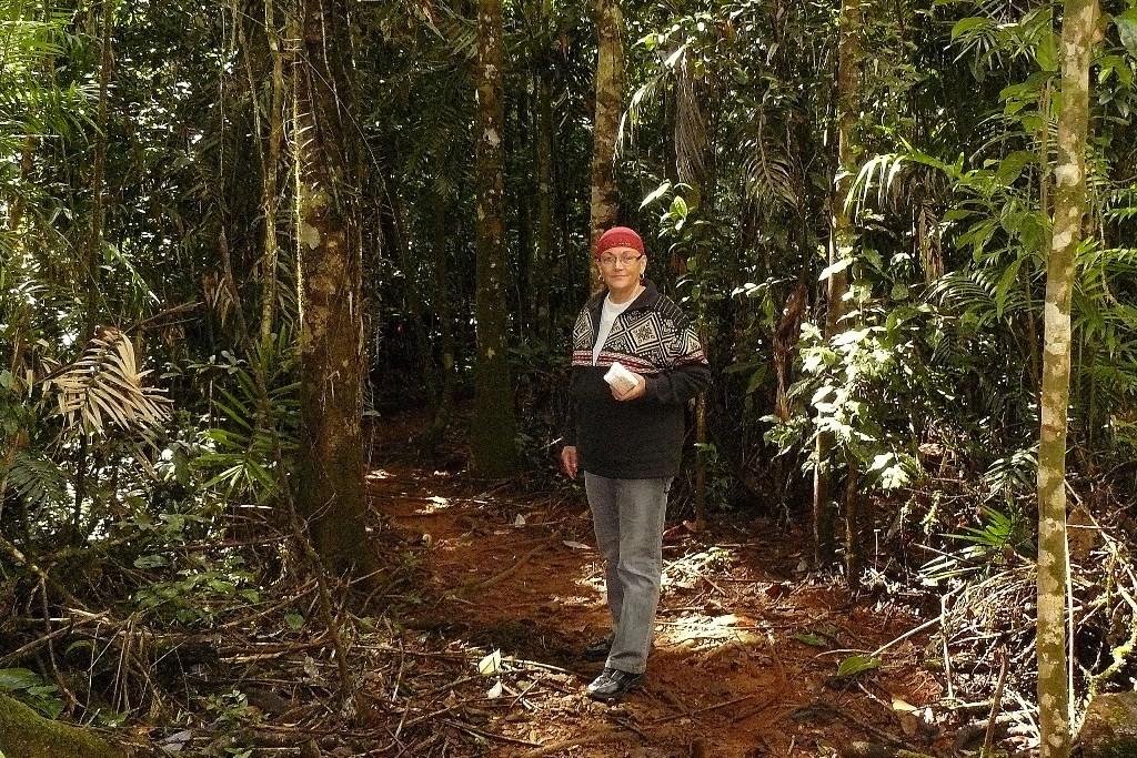Auf dem Weg durch den Regenwald zum Ithica River!