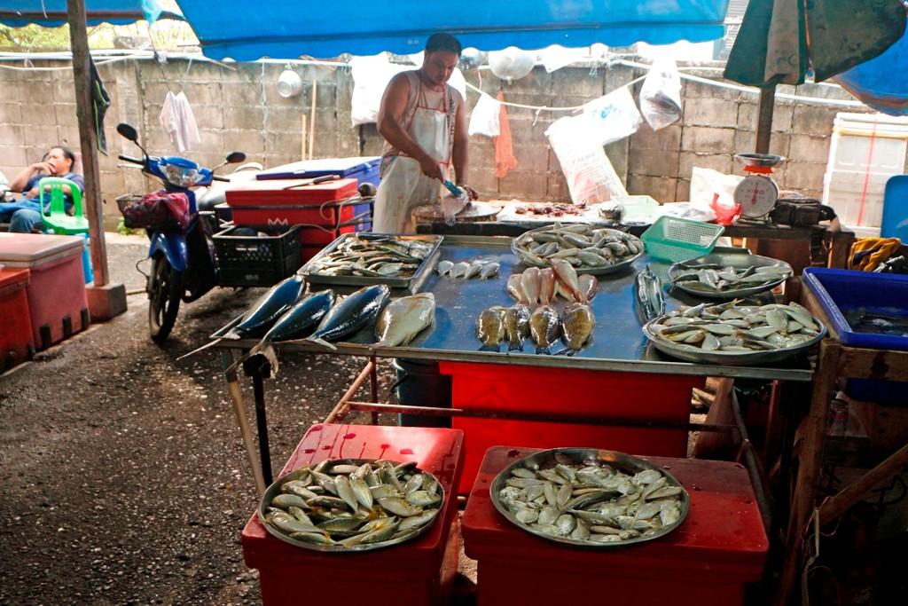 Frischfisch - überall hier zu haben, schmeckt gegrillt, gebraten und geräuchert!