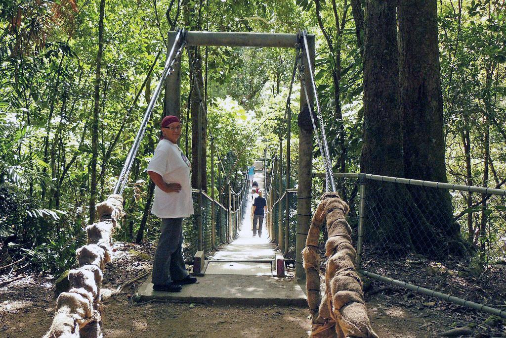 Hängebrücke über die Mossman Gorge
