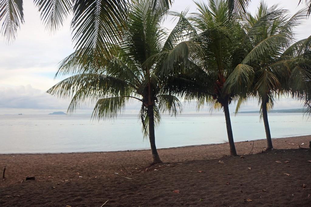 Morgens am Strand, im Hintergrund Apo Island