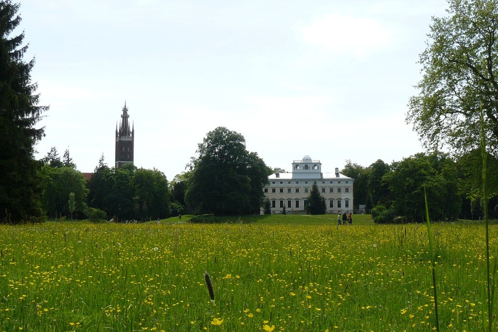 Blick von Schochs Garten über die Frühlingswiese auf das Wörlitzer Schloss und die St. Petri Kirche