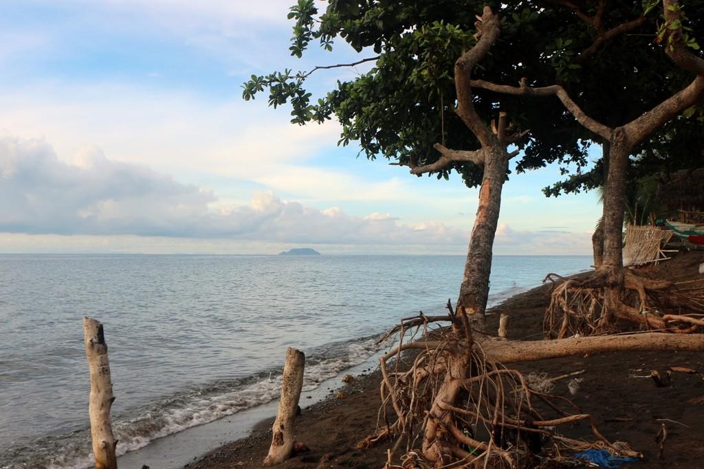 ...und von überall sieht man das Taucheldorado Apo Island