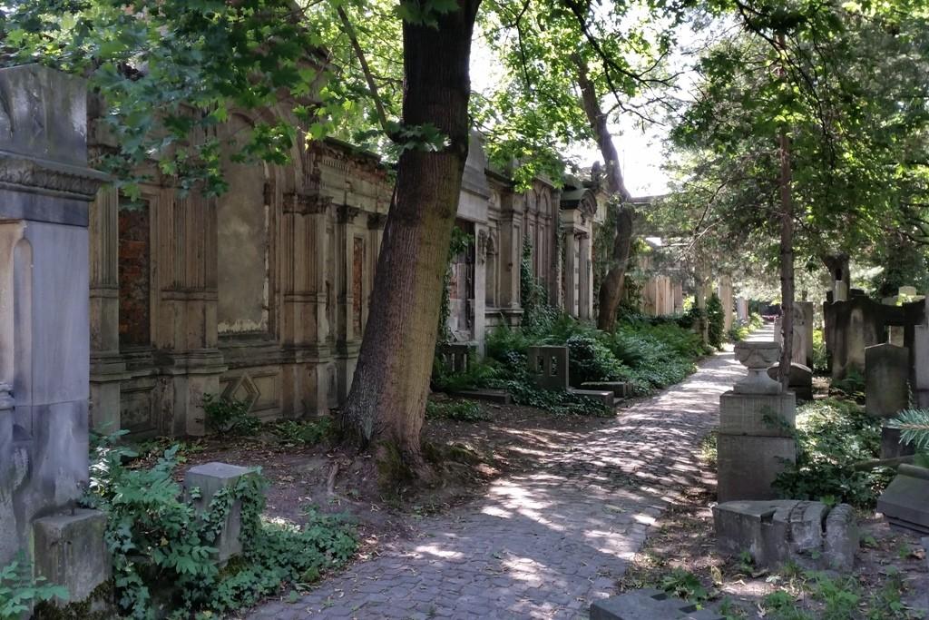 Der Jüdische Friedhof von Breslau (Wroclaw) kommt Besuchern heute vor wie aus der Zeit gefallen vor!