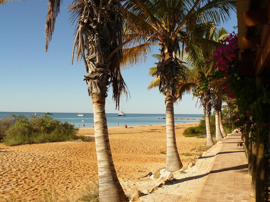 Am Strand von Monkey Mia, paradisisch, wunderschön aber hoch frequentiert