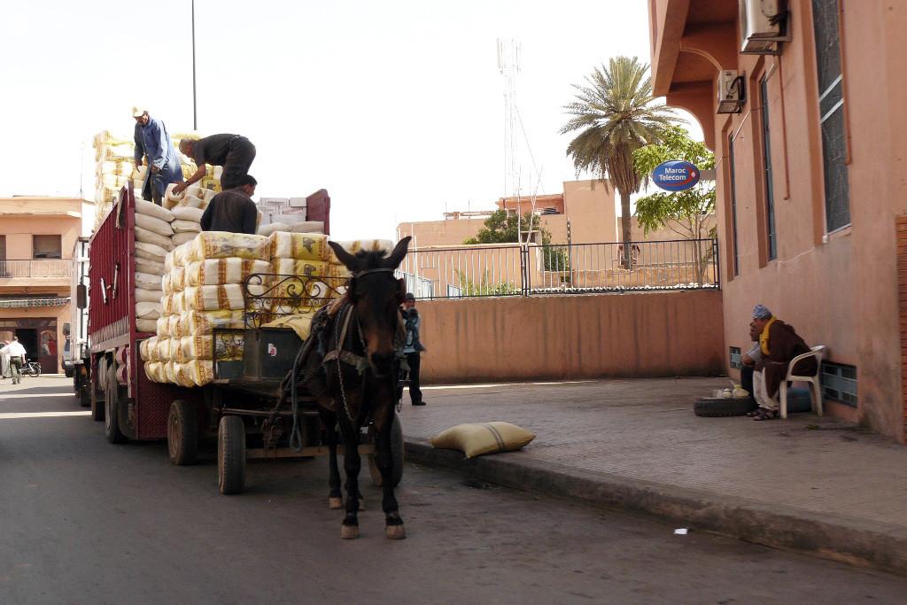 ...Szenen des Stadtlebens in Marrakech