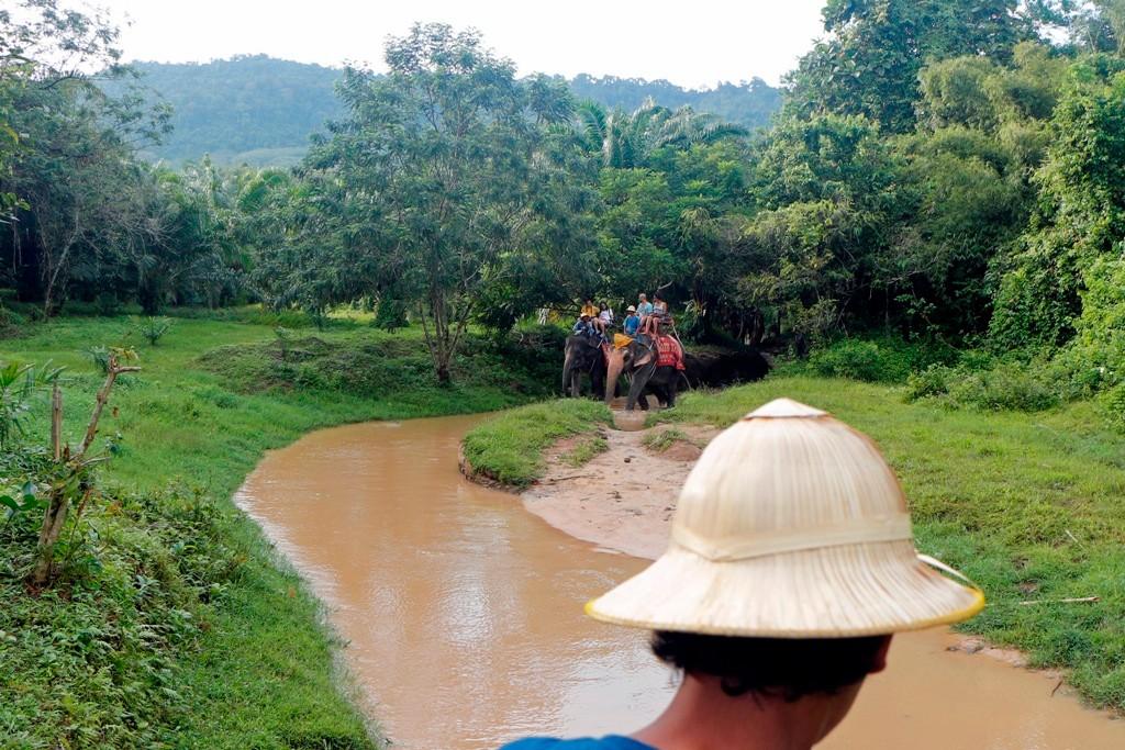 Die Elefantentrekking Tour führt hier durch ein schmales Flussbett. Es ist angenehm hoch oben im Schauckelsitz