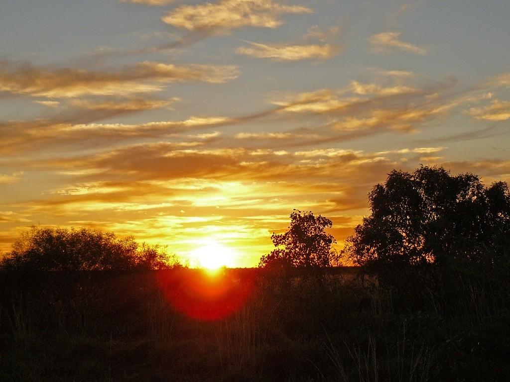 Wir sind rechtzeitig, kurz vor Sonnenuntergang im großen Camp des Eighty Mile Beach´s angelangt. Für dieses Foto hatten wir gerade noch Zeit.