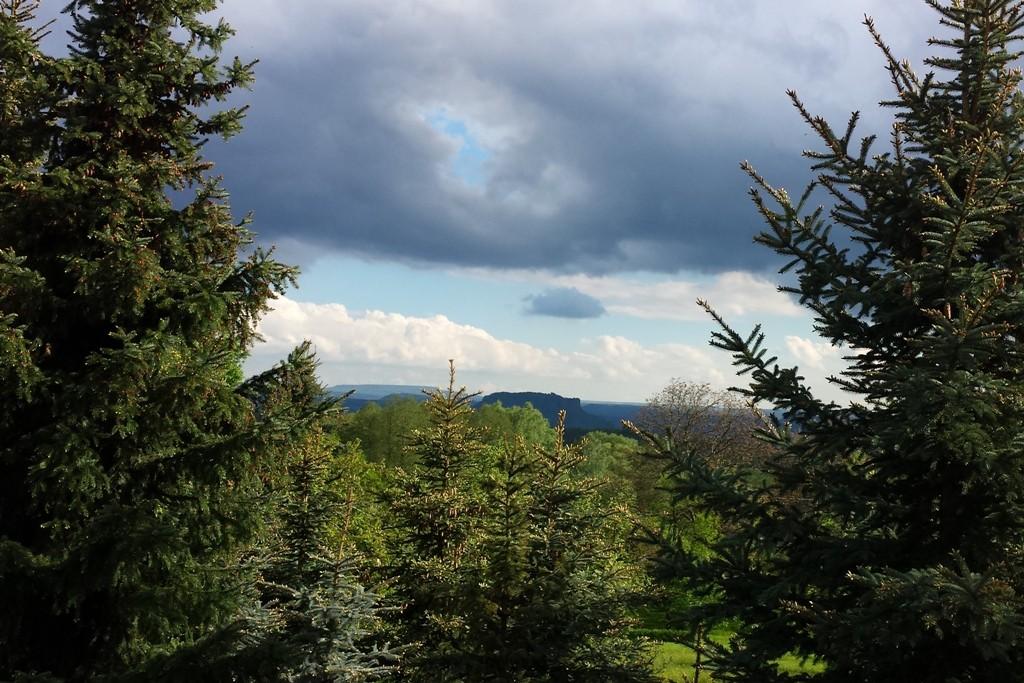 Blick auf den Lilienstein im Frühling von Porschdorf her gesehen