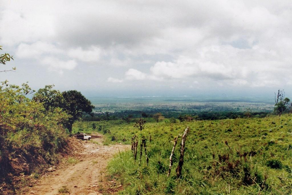 Landschaft auf der Insel Santa Cruz