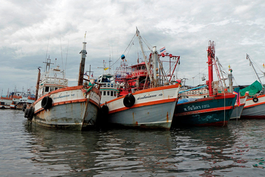 Eine Teilansicht der sehr zahlreich vorhandenen Fischkutter im Chalonger Hafenbecken!