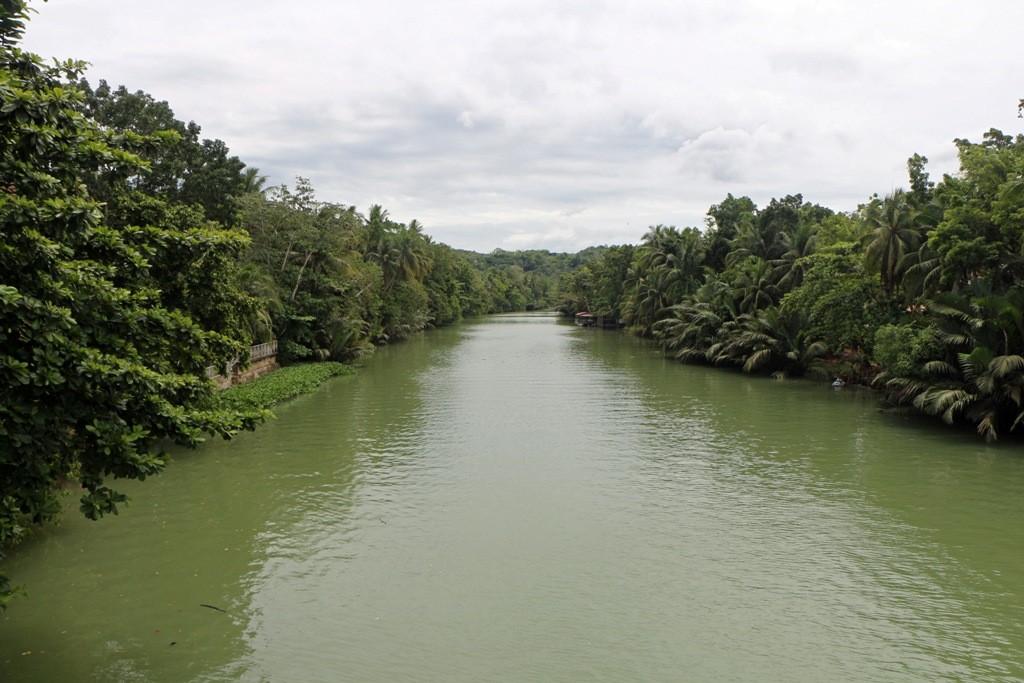 ...der Loboc River!