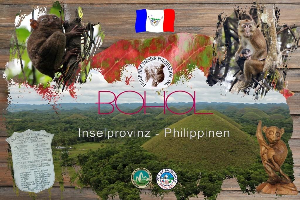 Die Provinz Bohol besuchten wir zwei mal! Zum Beginn unserer Reise als stop over und am Ende inkl. Übernachtung um uns einige der Highlights der Insel anzusehen!