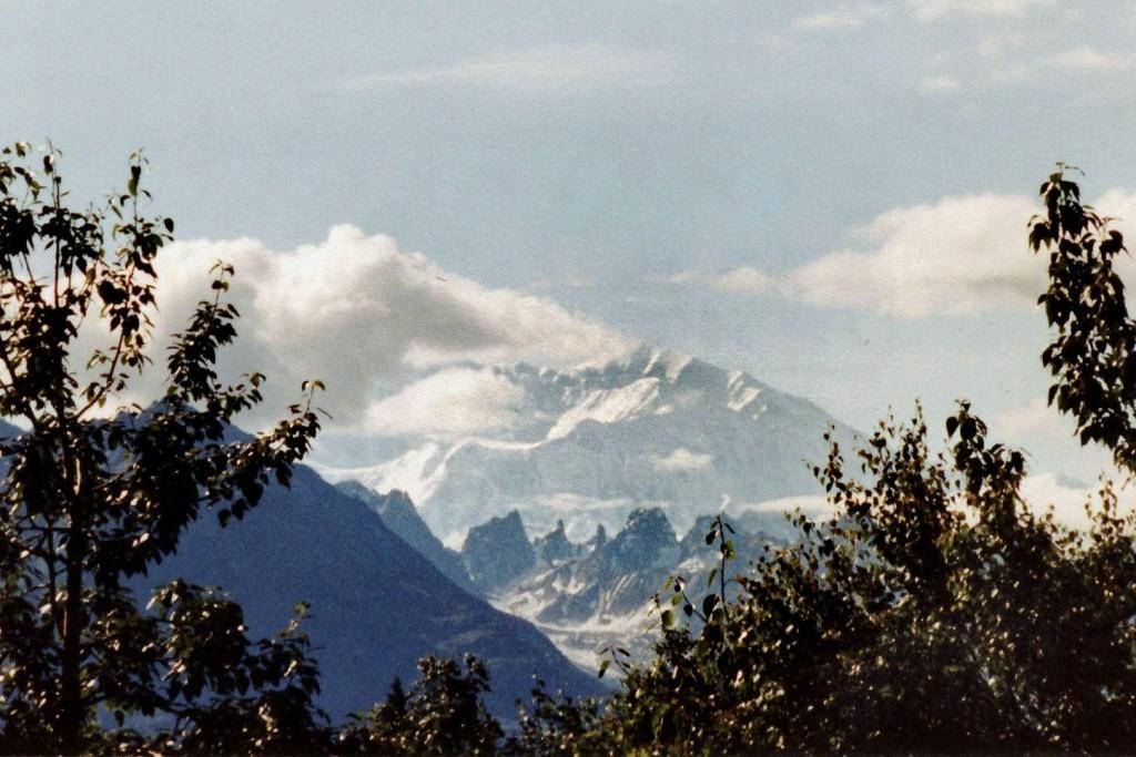 Im Hintergrund der Denali (6.190 m hoch) ehem. Mt. McKinley, innerhalb der Alaska Ranges