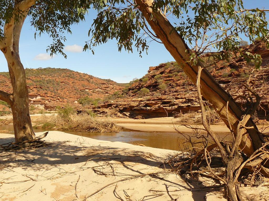 Die Wanderung am Murchison River entlang, der hier im Verlauf eine Art Hufeisen bildet, ist irre und füllt die Speicherkarte der Kamera.