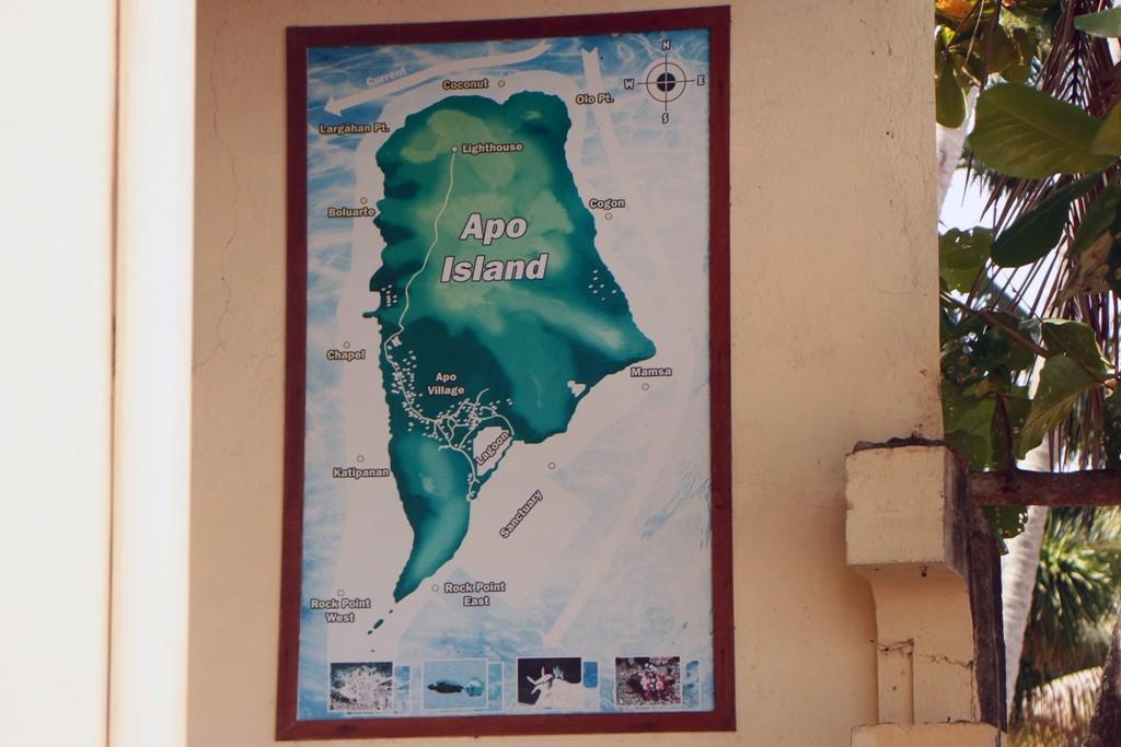 Und so sieht Apo Island als Wandgemälde auf Putz aus!