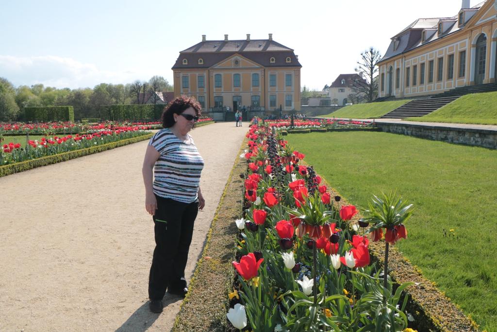 Rosa bewundert die frühjährliche Blütenpracht nahe des Friedrichpalais