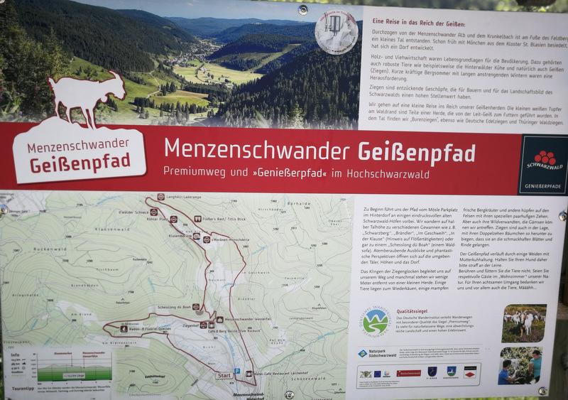 Geißenpfad, Menzenschwander Wasserfall, Schwarzwald, Deutschland
