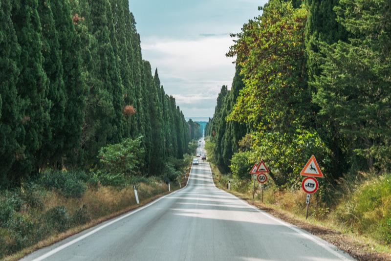 Zypressen, Bolgheri, Toskana, Italien, Fotospot