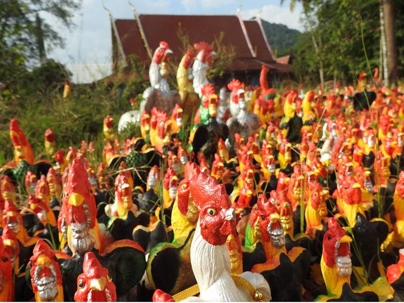 Chicken Tempel, Thailand, Sehenswürdigkeiten, Provinz